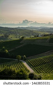 hills and vineyards in Langhe Monferrato region with mountains on background in Piedmont, Northern Italy.
