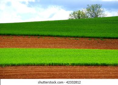 Hillside Farmlands