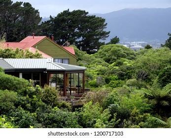 Hillside residential houses amongst native bush, Korokoro, Lower Hutt New Zealand
