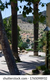 Hillside street with buildings, seen through large trees, with a mountain in the background, on a sunny summer day.