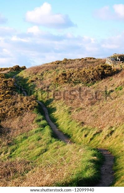 hilltop path through the gorse