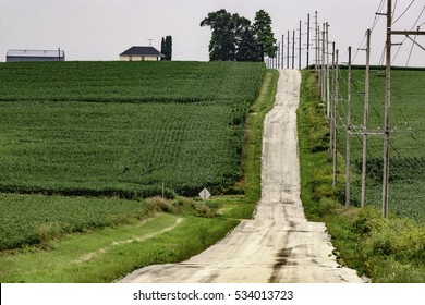 Hilly country road by a series of telephone poles between corn fields in summer, northern Illinois, USA, for rural and travel themes