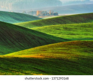 hilly field. picturesque hills of autumn field. autumn sunrise