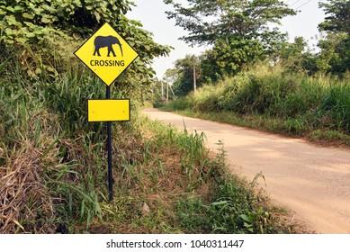 Hilly road,Sri Lanka