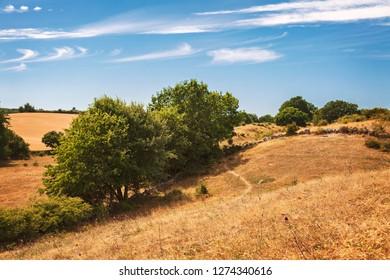 Hilly rural landscape. Brosarp, south Sweden.