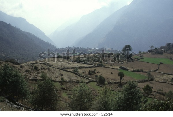 Himalaya valley with cultivated terraces
