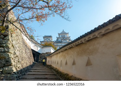 Himeji castle in the background with cherry trees tree during autumn season in Hyogo Prefecture, Japan.