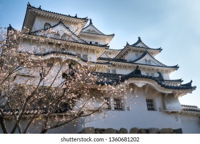 Himeji Castle is the best preserved castle in Japan and it serves as a classic example of Japanese Castle architecture. Himeji visitors can still find cherry blossom trees on Castle grounds in autumn