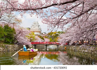 Himeji Castle Cherrry Blossoms Viewing Festival