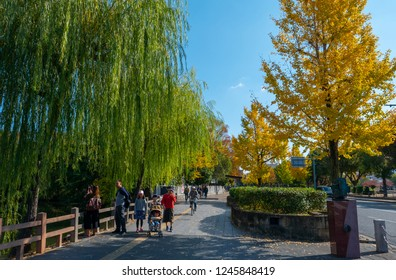 HIMEJI, HYOGO PREFECTURE, JAPAN-NOVEMBER 10, 2018: Unidentified peple enjoy autumn season at Himeji Castle complex in Himeji, Hyogo Prefecture, Japan.