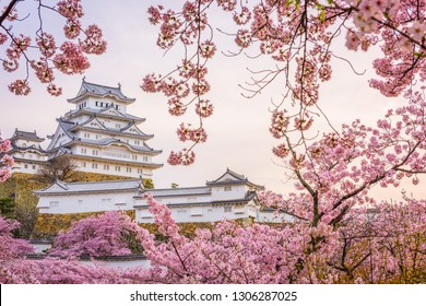 Himeji, Japan at Himeji Castle during spring cherry blossom season.