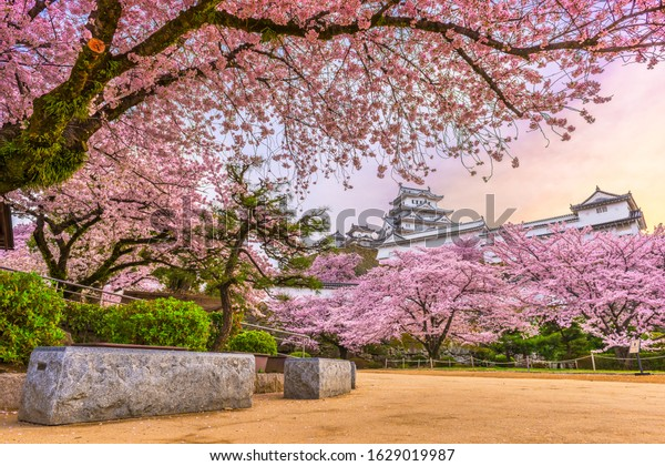 Himeji, Japan at Himeji Castle in spring with cherry blossoms in full bloom.