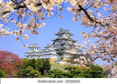 Himeji-jo castle in spring cherry blossoms