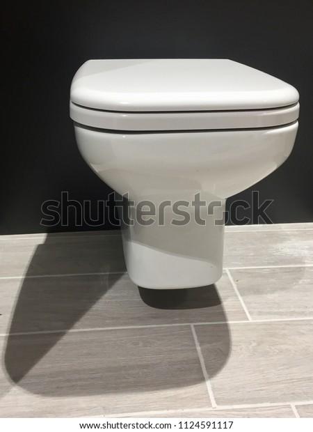 Strange Hinged Toilet Bowl Wcseat Cover Stock Image Download Now Evergreenethics Interior Chair Design Evergreenethicsorg