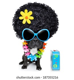hippie dog of the seventies with big afro wig  a yellow flower
