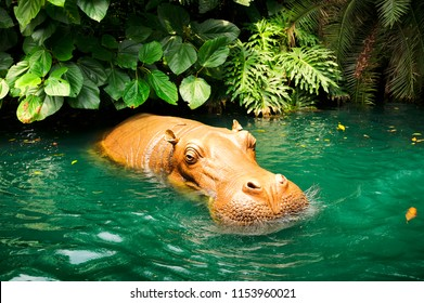 Hippo asia style in pond jungle.