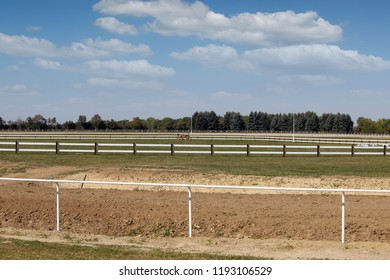 Hippodrome horse racing area with green grass and white fences landscape