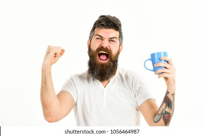 Hipster with beard holds mug, energetic and successful macho. Man full of energy in morning, white background. Energetic man concept. Man with happy face stretching try to awake with cup of coffee.