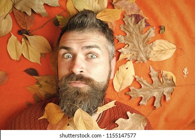Hipster or bearded guy in autumn on orange background. Floral fashion and beauty. Season and autumn. Man with long beard in natural yellow fall leaves. leaves background at barber and hairdresser.