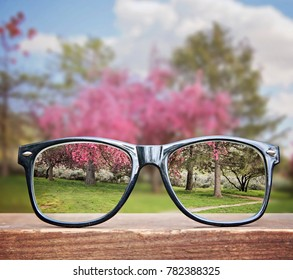 hipster glasses on a park bench or table with a pretty pink tree in the background