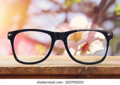 hipster glasses on a wooden rustic table in front of cherry tree flowers