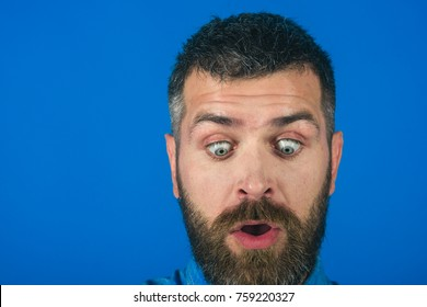 hipster man with beard on surprised face on blue background, fashion and barber, feeling and emotions, copy space
