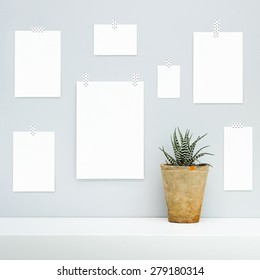 Hipster scandinavian interior design.  Mood board with empty pieces of paper hanging on the gray wall with potted succulent flower. Mock up.