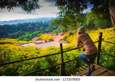 Hipster young girl enjoyingon peak of foggy mountain, Landscape Mexican sunflower Tung Bua Tong at Doi Hua Mae Kham in Chaing Rai, Thailand.