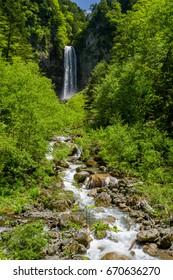 Hirayu waterfall in fresh green, Gifu, Japan