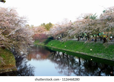 Hirosaki, Japan - April 25 2007: People are visiting the cherry blossom at Hirosaki Castle, located in northeastern Japan.
