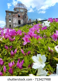 Hiroshima Genbaku (Atomic Bomb) Dome with Pink and White Flowers