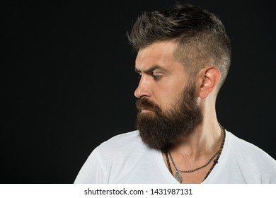 His beard is styled appropriately. Brutal hipster with textured beard hair on black background. Bearded man with stylish mustache and beard shape. Caucasian guy with beard in profile, copy space.
