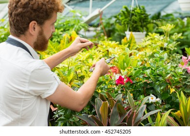 His own kind of therapy. Shot of a male florist trimming plants in is nursery