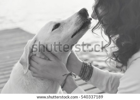 His owner dog licks gently, loving gesture