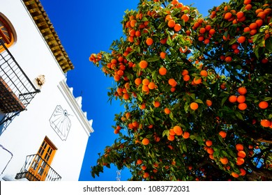 Historic and Artistic Center of Marbella, Marbella, Costa del Sol Occidental, Malaga, Andalusia, Spain, Iberian Peninsula