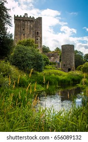 The historic Blarney Castle and Watch Tower stand amid the lush gardens surrounding it.