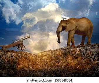 Historic cannon, elephant and a dove (as a symbol of peace or as a messenger) on a stonewall over dramatic cloudy sky. Photomanipulation