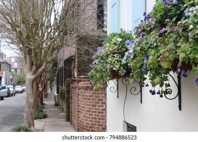 Historic Charleston Scene