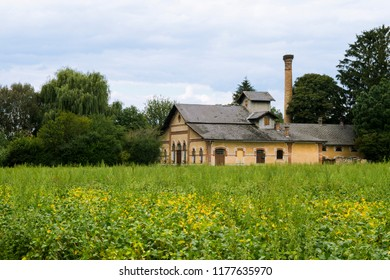 Historic Hungarian rural distillery with meadow. High chimney with a stork's nest. Historic country industrial building with grass and trees. Lower Austria. Burgenland. Central Europe.