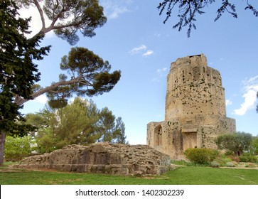 Historic monument, Tour Magne, Magne Tower, in the Fountain Gardens, Nîmes, France. The Tour Magne, or the Great Tower, is the only remnant of the ancient Augustan fortifications.