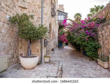 Historic narrow streets in Jaffa, Israel