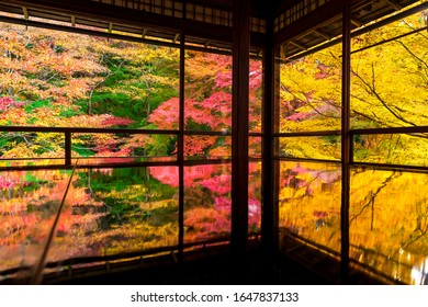 The historic Rurikoin is open to the public during the fall foliage season.The autumn leaves reflected on the desk are very beautiful.