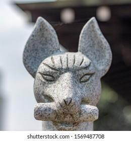 Historic stone image of fox (Japanese: kitsune) messenger of the deity Inari, holding in its mouth a symbolic scroll, at Nomachiinari shinto shrine in Kanazawa city, Ishikawa Prefecture, Japan.