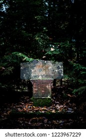 Historic tombstone in dark forest.