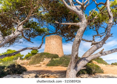 historic watchtower (torre) at Bay of Cala Pi with blue sky and green trees and shrubs, Majorca, Spain
