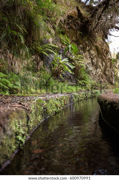 Historic water supply system, known as Levada in tropical forest, Madeira Island, Portugal