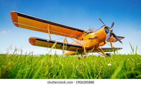 historical aircraft on a meadow