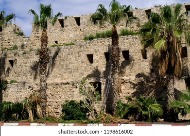 Historical Akko ,Israel Stronghold wall and Palms