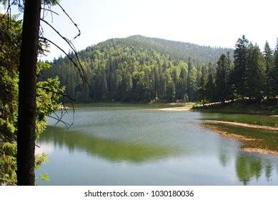 Historical lake Synevir, in Ukrainian Karpaty