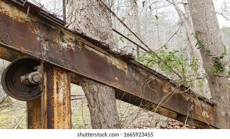 Historical Mining Rail with Tree Consuming It